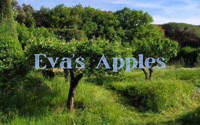 Eva's Apples
